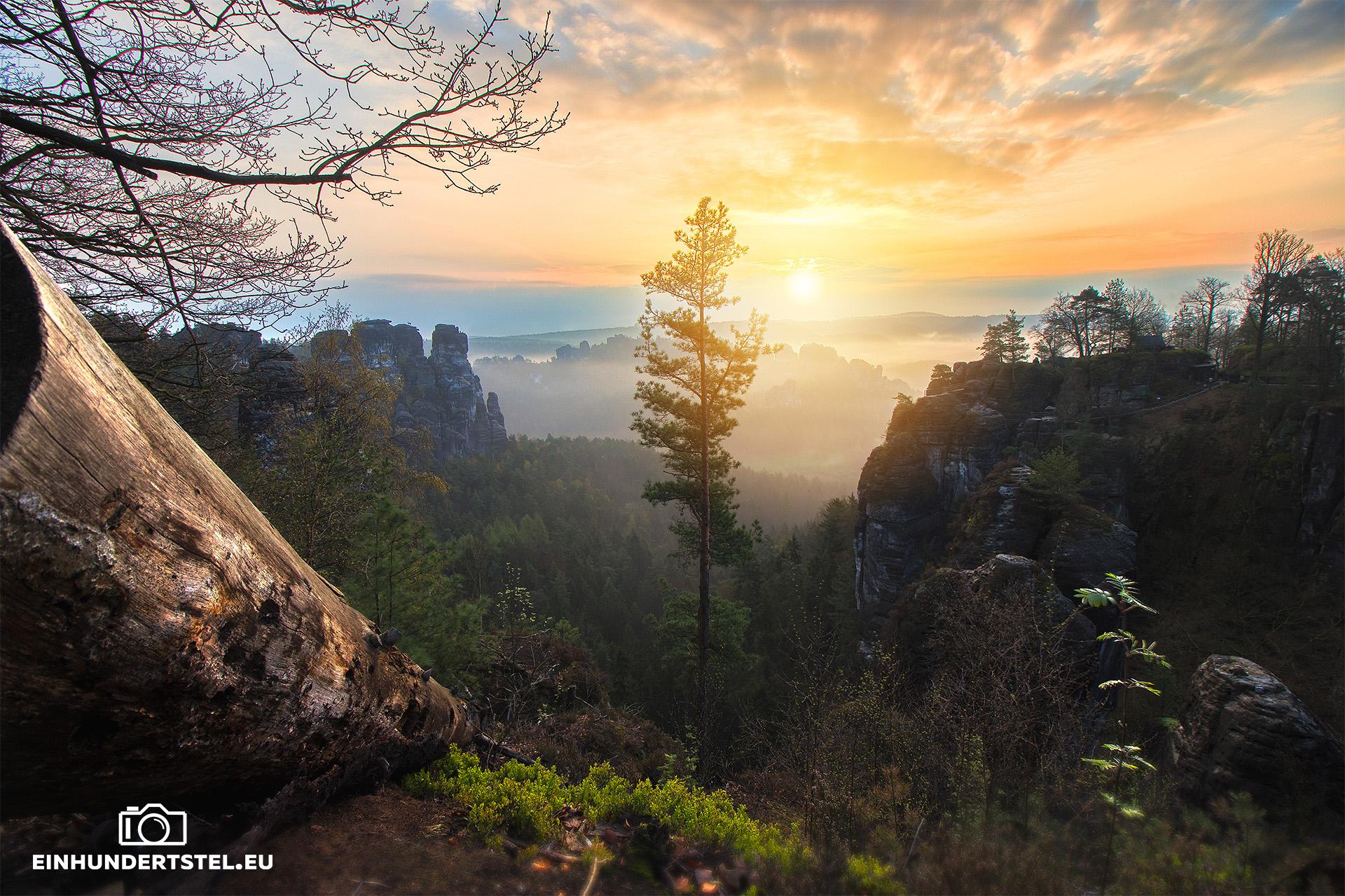 Sonnenaufgang von der Bastei